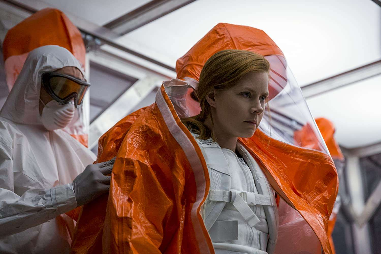 Arrival-2018